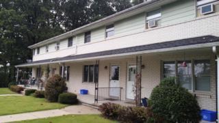 205 S Beech, Fleetwood, PA 19522 (MLS #256926) :: The Craig Hartranft Team, Berkshire Hathaway Homesale Realty