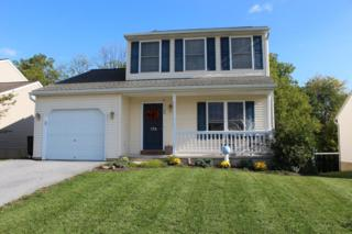 176 Twin Creeks Drive, Jonestown, PA 17038 (MLS #256935) :: The Craig Hartranft Team, Berkshire Hathaway Homesale Realty