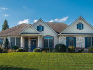 4 Doveland Court, Lancaster, PA 17602 (MLS #257031) :: The Craig Hartranft Team, Berkshire Hathaway Homesale Realty