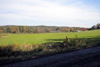 0 Brookside Road, Pine Grove, PA 17963 (MLS #257495) :: The Craig Hartranft Team, Berkshire Hathaway Homesale Realty