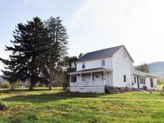 2181 Licking Creek Road, Mcveytown, PA 17051 (MLS #257986) :: The Craig Hartranft Team, Berkshire Hathaway Homesale Realty