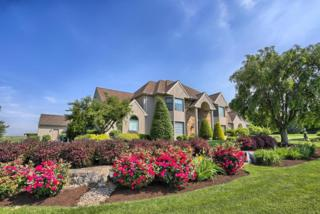 895 Long Road, Manheim, PA 17545 (MLS #258211) :: The Craig Hartranft Team, Berkshire Hathaway Homesale Realty