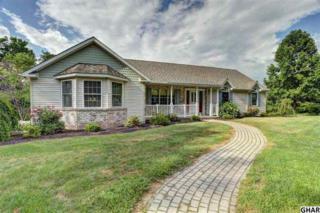 235 Park Road, Herndon, PA 17830 (MLS #258390) :: The Craig Hartranft Team, Berkshire Hathaway Homesale Realty