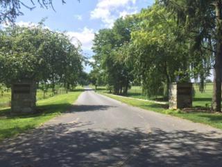 LOT 5 Grandview Drive, Palmyra, PA 17078 (MLS #258437) :: The Craig Hartranft Team, Berkshire Hathaway Homesale Realty