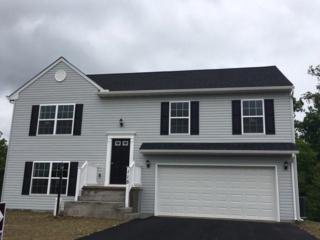 15 Ryan Lane #65, Mount Wolf, PA 17347 (MLS #258473) :: The Craig Hartranft Team, Berkshire Hathaway Homesale Realty