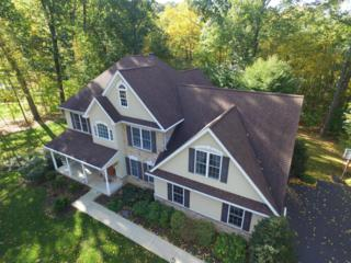 9 Button Buck Drive, Conestoga, PA 17516 (MLS #258810) :: The Craig Hartranft Team, Berkshire Hathaway Homesale Realty