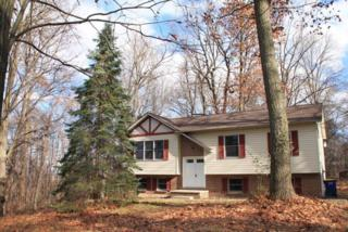 360 Pleasant View Road, New Cumberland, PA 17070 (MLS #260013) :: The Craig Hartranft Team, Berkshire Hathaway Homesale Realty