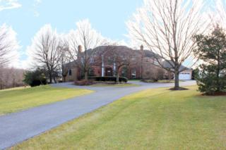 938 Log Cabin Road, Leola, PA 17540 (MLS #260337) :: The Craig Hartranft Team, Berkshire Hathaway Homesale Realty