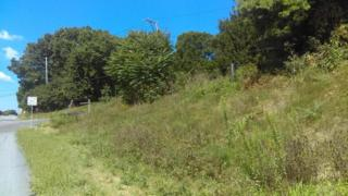 0 Newport Pike, Gap, PA 17527 (MLS #260460) :: The Craig Hartranft Team, Berkshire Hathaway Homesale Realty