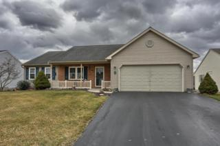 8 Greenbriar Drive, Myerstown, PA 17067 (MLS #260598) :: The Craig Hartranft Team, Berkshire Hathaway Homesale Realty