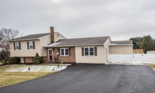 1432 Susquehannock Drive, Drumore, PA 17518 (MLS #260645) :: The Craig Hartranft Team, Berkshire Hathaway Homesale Realty