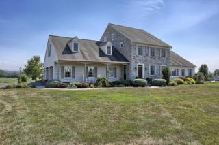 11 Wheatland Circle, Lebanon, PA 17042 (MLS #260671) :: The Craig Hartranft Team, Berkshire Hathaway Homesale Realty