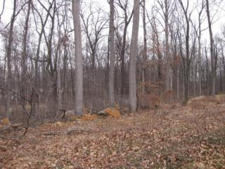 6034 White Pine Drive Lot 89, Elizabethtown, PA 17022 (MLS #260802) :: The Craig Hartranft Team, Berkshire Hathaway Homesale Realty