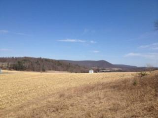 00 Zion Grove Road, Ringtown, PA 17967 (MLS #260909) :: The Craig Hartranft Team, Berkshire Hathaway Homesale Realty