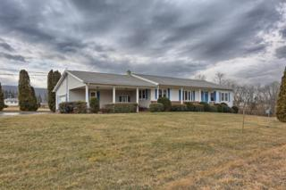 25 Forest Drive, Hegins, PA 17938 (MLS #261193) :: The Craig Hartranft Team, Berkshire Hathaway Homesale Realty