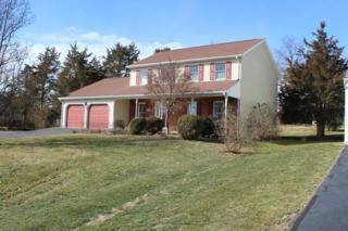 428 Heritage Drive, Gettysburg, PA 17325 (MLS #261338) :: The Craig Hartranft Team, Berkshire Hathaway Homesale Realty