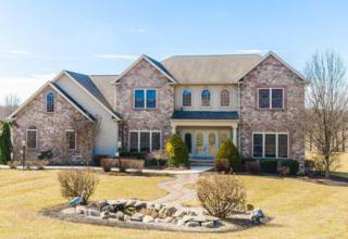 104 Monument Drive, Elizabethtown, PA 17022 (MLS #261423) :: The Craig Hartranft Team, Berkshire Hathaway Homesale Realty