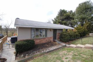158 Witmer Road, Lancaster, PA 17602 (MLS #261501) :: The Craig Hartranft Team, Berkshire Hathaway Homesale Realty