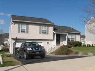 3955 Birchwood Lane, Columbia, PA 17512 (MLS #261517) :: The Craig Hartranft Team, Berkshire Hathaway Homesale Realty