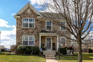 213 Basil Street, Marietta, PA 17547 (MLS #261611) :: The Craig Hartranft Team, Berkshire Hathaway Homesale Realty