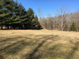 85 Hartz Store Road, Mohnton, PA 19540 (MLS #261766) :: The Craig Hartranft Team, Berkshire Hathaway Homesale Realty