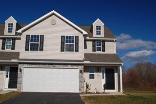 164 Braeburn Way #35, Palmyra, PA 17078 (MLS #261840) :: The Craig Hartranft Team, Berkshire Hathaway Homesale Realty