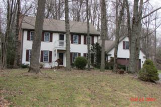 243 Dogwood Drive, Elizabethtown, PA 17022 (MLS #261961) :: The Craig Hartranft Team, Berkshire Hathaway Homesale Realty