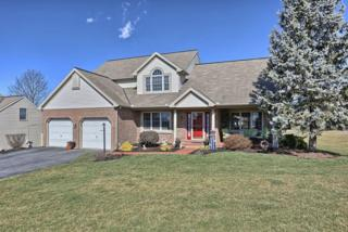 17 Cricket Lane, Myerstown, PA 17067 (MLS #262115) :: The Craig Hartranft Team, Berkshire Hathaway Homesale Realty