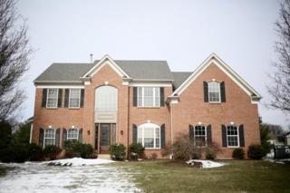 163 Raven Hollow Drive, Other, PA 99999 (MLS #262210) :: The Craig Hartranft Team, Berkshire Hathaway Homesale Realty