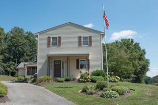 7147 River Road, Conestoga, PA 17516 (MLS #262287) :: The Craig Hartranft Team, Berkshire Hathaway Homesale Realty