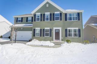 6281 Bayberry Avenue, Manheim, PA 17545 (MLS #262447) :: The Craig Hartranft Team, Berkshire Hathaway Homesale Realty
