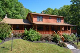 1199 Buck Hollow Road, Mohnton, PA 19540 (MLS #262466) :: The Craig Hartranft Team, Berkshire Hathaway Homesale Realty