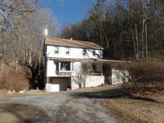 4698 State Route 147, Herndon, PA 17830 (MLS #262490) :: The Craig Hartranft Team, Berkshire Hathaway Homesale Realty
