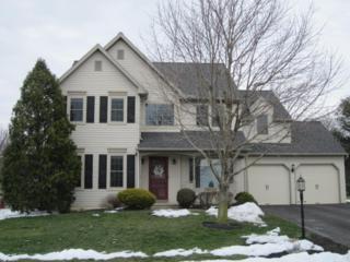94 Apple Blossom Drive, Lancaster, PA 17602 (MLS #262537) :: The Craig Hartranft Team, Berkshire Hathaway Homesale Realty