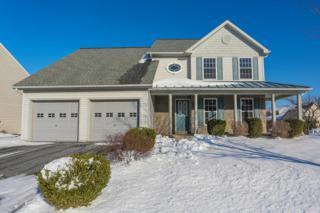 172 Agape Drive, Ephrata, PA 17522 (MLS #262583) :: The Craig Hartranft Team, Berkshire Hathaway Homesale Realty