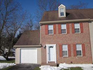 800 Penny Lane, Mount Joy, PA 17552 (MLS #262615) :: The Craig Hartranft Team, Berkshire Hathaway Homesale Realty