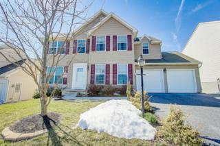 6033 Bayberry Avenue, Manheim, PA 17545 (MLS #262692) :: The Craig Hartranft Team, Berkshire Hathaway Homesale Realty