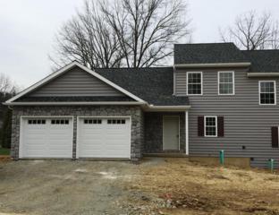 215 E New Street, Mountville, PA 17554 (MLS #262695) :: The Craig Hartranft Team, Berkshire Hathaway Homesale Realty