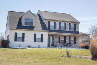 836 W Brubaker Valley Road, Lititz, PA 17543 (MLS #262717) :: The Craig Hartranft Team, Berkshire Hathaway Homesale Realty