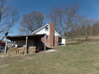 661 Gun Club Road, Herndon, PA 17830 (MLS #262855) :: The Craig Hartranft Team, Berkshire Hathaway Homesale Realty