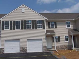 215 South Village Circle #174, Palmyra, PA 17078 (MLS #263240) :: The Craig Hartranft Team, Berkshire Hathaway Homesale Realty
