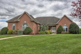 68 Augusta Drive, Annville, PA 17003 (MLS #264928) :: The Craig Hartranft Team, Berkshire Hathaway Homesale Realty
