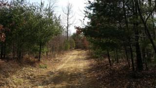 00 Iron Gate Road, Beech Creek, PA 16822 (MLS #248312) :: The Craig Hartranft Team, Berkshire Hathaway Homesale Realty