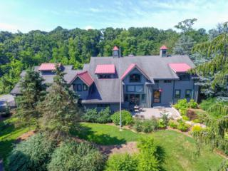 73 Willow Creek Road, Wrightsville, PA 17368 (MLS #251881) :: The Craig Hartranft Team, Berkshire Hathaway Homesale Realty