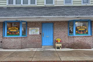 410 Locust Street, Columbia, PA 17512 (MLS #257130) :: The Craig Hartranft Team, Berkshire Hathaway Homesale Realty