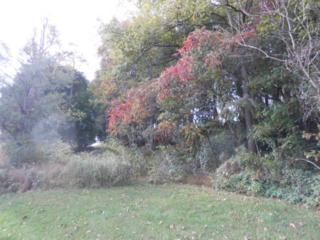 0 Deturksville Road, Pine Grove, PA 17963 (MLS #257340) :: The Craig Hartranft Team, Berkshire Hathaway Homesale Realty