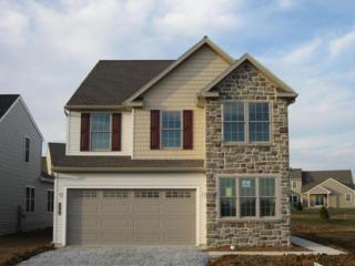 1383 Fieldstone Drive #178, Mount Joy, PA 17552 (MLS #259794) :: The Craig Hartranft Team, Berkshire Hathaway Homesale Realty