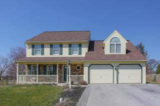 153 Strickler Run Drive, Columbia, PA 17512 (MLS #262101) :: The Craig Hartranft Team, Berkshire Hathaway Homesale Realty