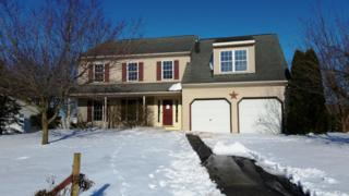 15 Cedar Court, Reinholds, PA 17569 (MLS #262285) :: The Craig Hartranft Team, Berkshire Hathaway Homesale Realty