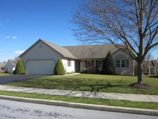 42 Arbor Drive, Myerstown, PA 17067 (MLS #262396) :: The Craig Hartranft Team, Berkshire Hathaway Homesale Realty